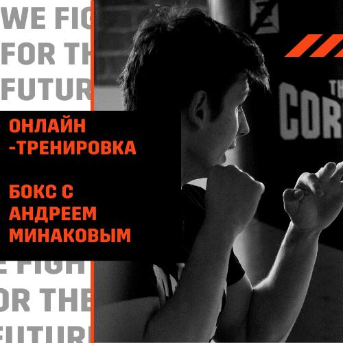 1 онлайн-тренировка The Corner с Андреем Минаковым